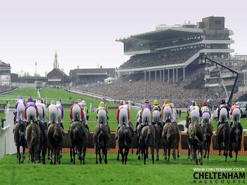 Cheltenham Racing X