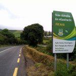 The future of Irish