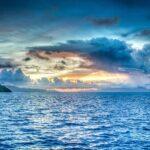 Marine protection legislation – Equality for all life